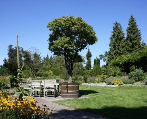 Botanischer Garten Hamburg, Loki-Schmidt-Garten