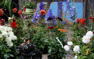 Pflanzenmarkt Freilichtmuseum Am Kiekeberg