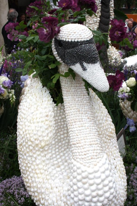 Swan out of shells Chelsea Flowershow