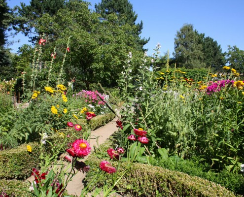 Bauerngarten, botanischer Garten Hamburg, Loki-Schmidt-Garten