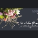 Firmenflyer für Florist