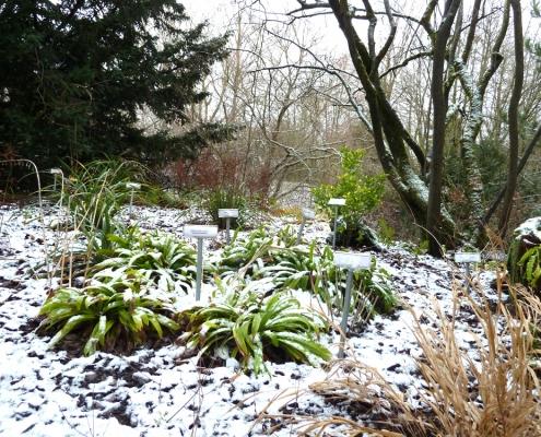 Pflanzschilder im Schnee - Parkanlage Grünberg